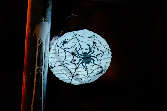 DLP-GP-Halloween-6498