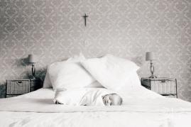Baby-Tatum-3663