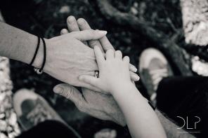 dlp-schildfamily-0498