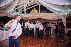 dlp-biscarini-wedding-7301